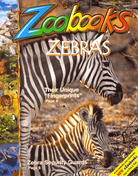 zoobooks magazine deal